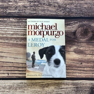 A Medal for Leroy by Michael Morpurgo Teaching Resources