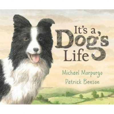 It's a Dog's Life -