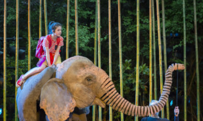 Ava Potter as Lilly riding Oona the elephant in Michael Morpurgo's Running Wild Live