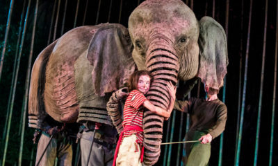 Ava Potter as Lilly in Michael Morpurgo's Running Wild Live
