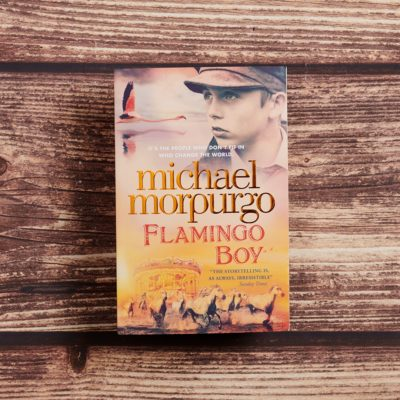 Flamingo Boy by Michael Morpurgo Lifestyle Photography