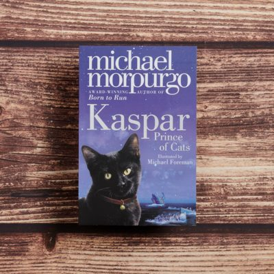 Kaspar Prince of Cats by Michael Morpurgo Lifestyle Photography